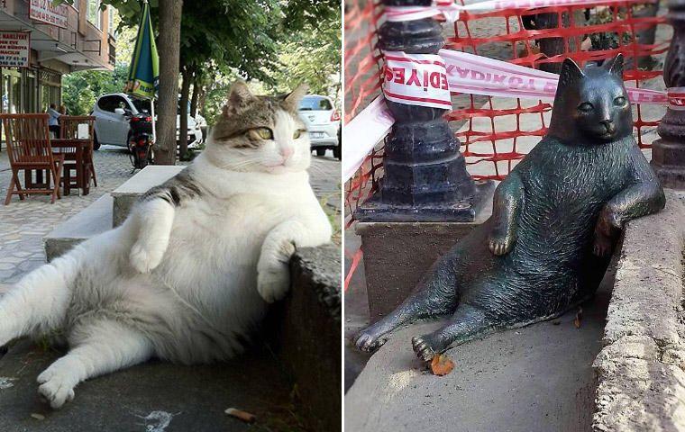 Statue de la chatte Tombili/ Chill en Turkie