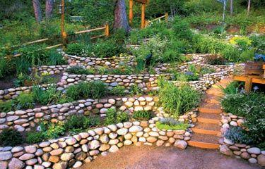 Terraced rock garden future gardens pinterest sloped for Sloped rock garden designs