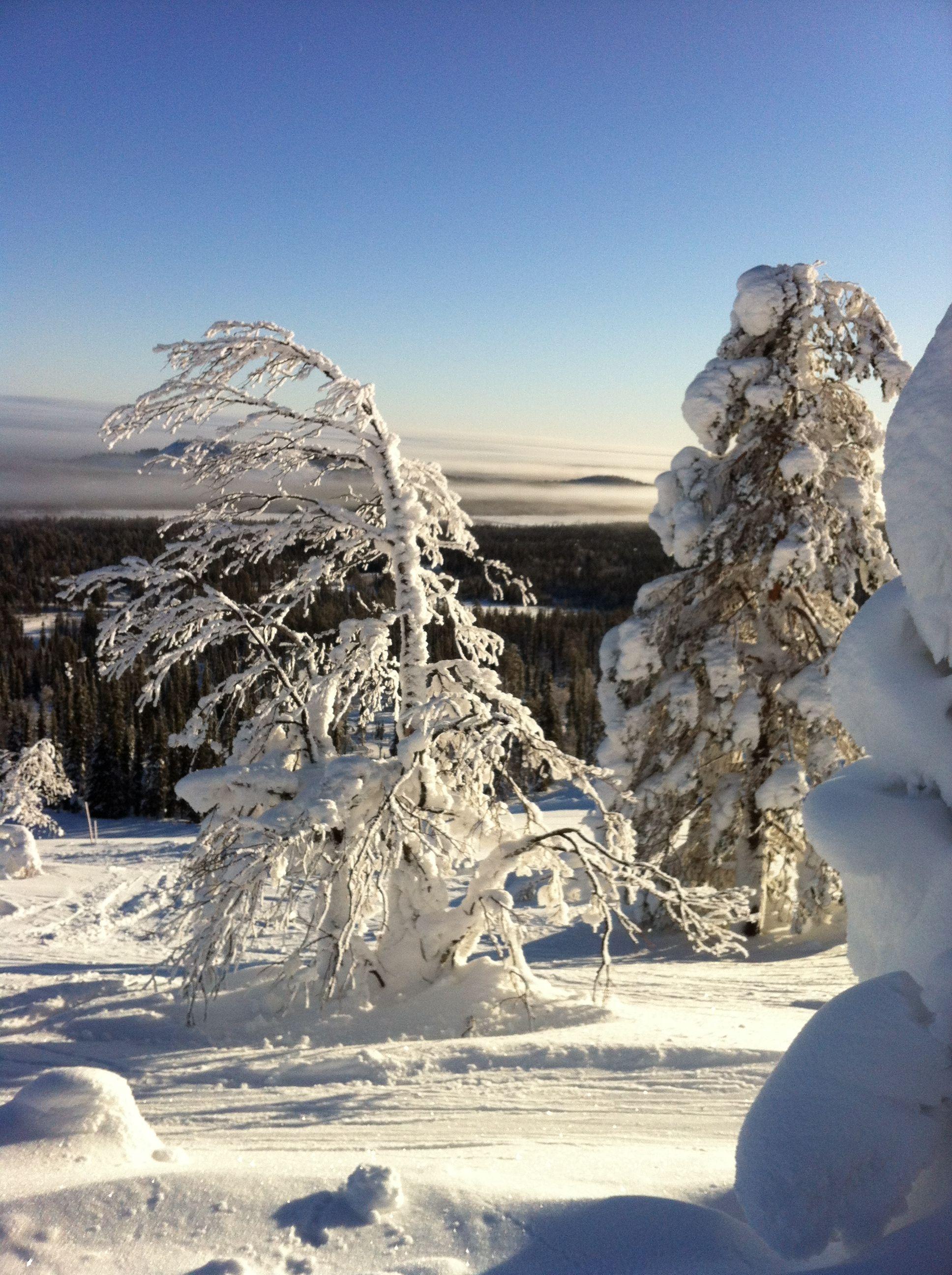 Luosto, Lapland