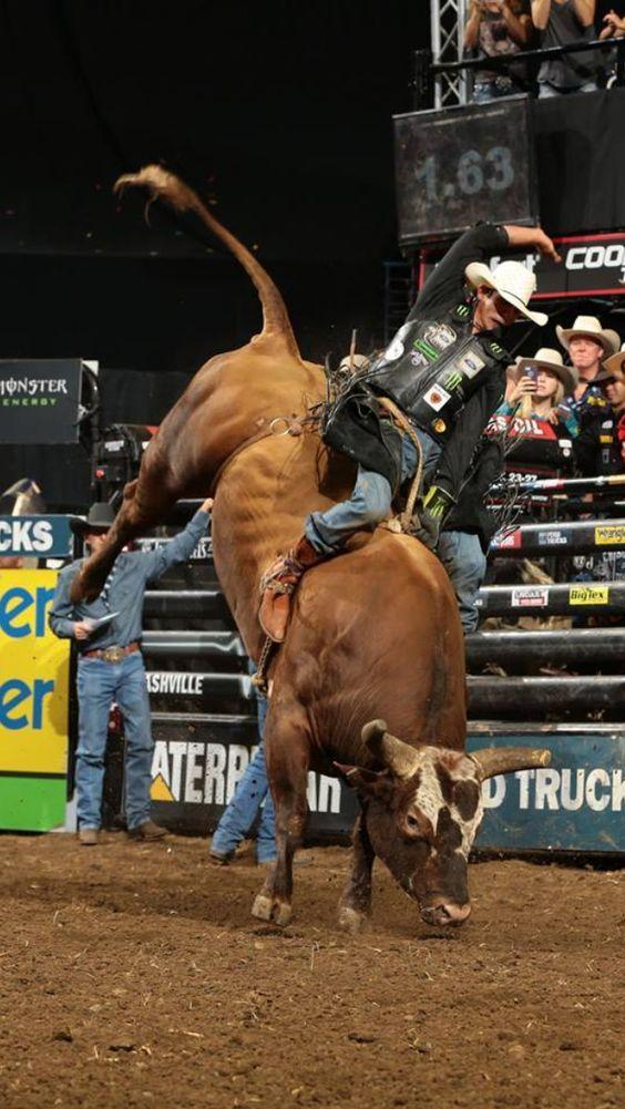 7360f692 JB Mauney on Bushwacker   PBR   Bucking bulls, Professional bull ...