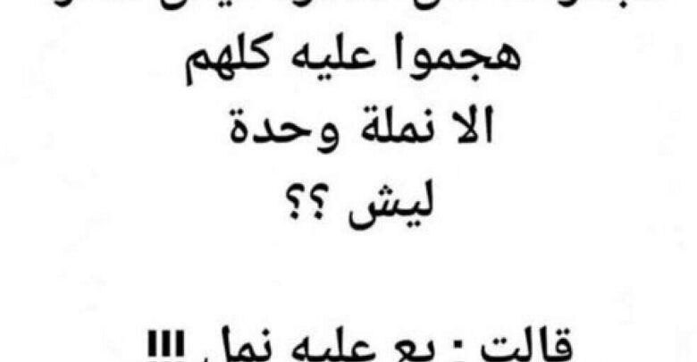 نكت مكتوبة مصرية قديمة وجديدة هتنسيك همومك Math Arabic Calligraphy Math Equations