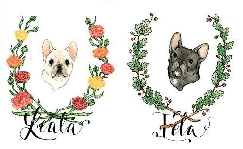 Custom Illustrated Pet Portraits By Lauren Moyer Dog Milk Pet Portraits Pug Art Animal Art
