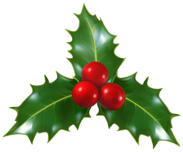 christmas holly mistletoe png clip art image kar csony angyalok rh pinterest co uk clipart christmas holly leaves christmas holly clipart free