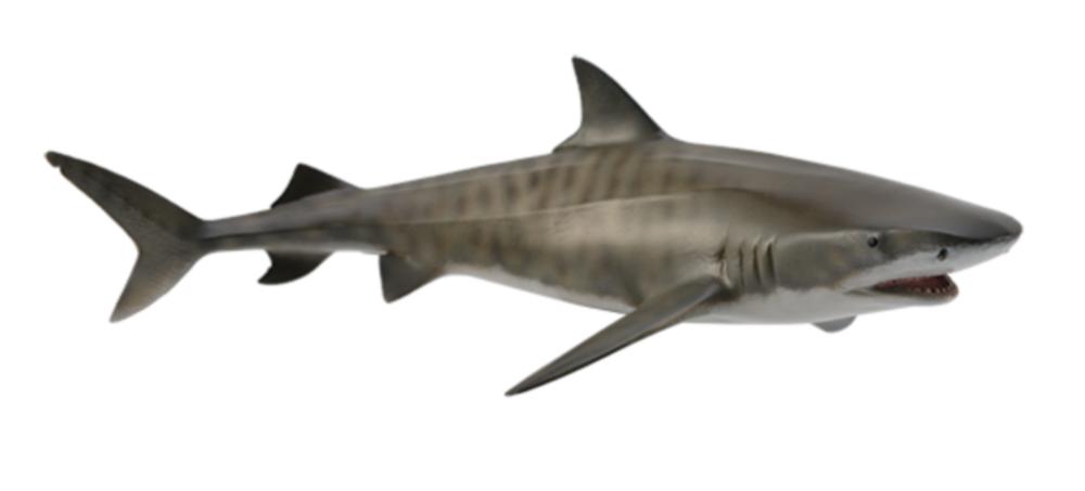Collecta 88661 Tigerhai 16 cm Wassertiere Tigerhai, Haie