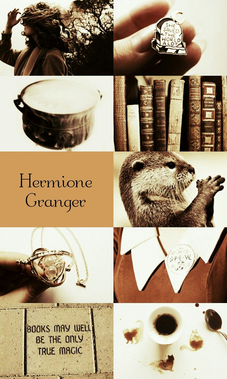 Hermione Granger From Harry Potter Harry Potter Aesthetic Harry Potter Magic Hermione Granger