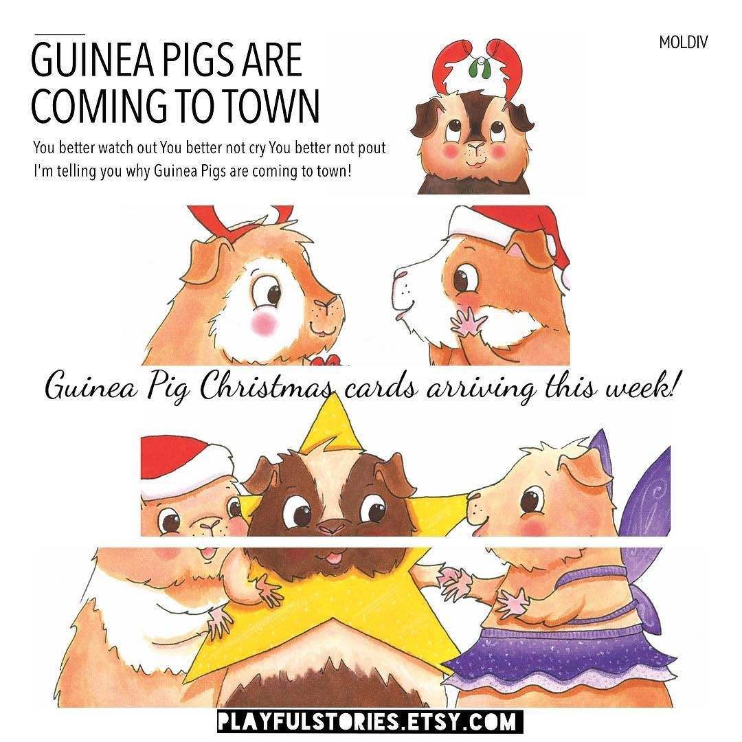 Guinea Pig Christmas cards will be available in my Etsy shop this ...