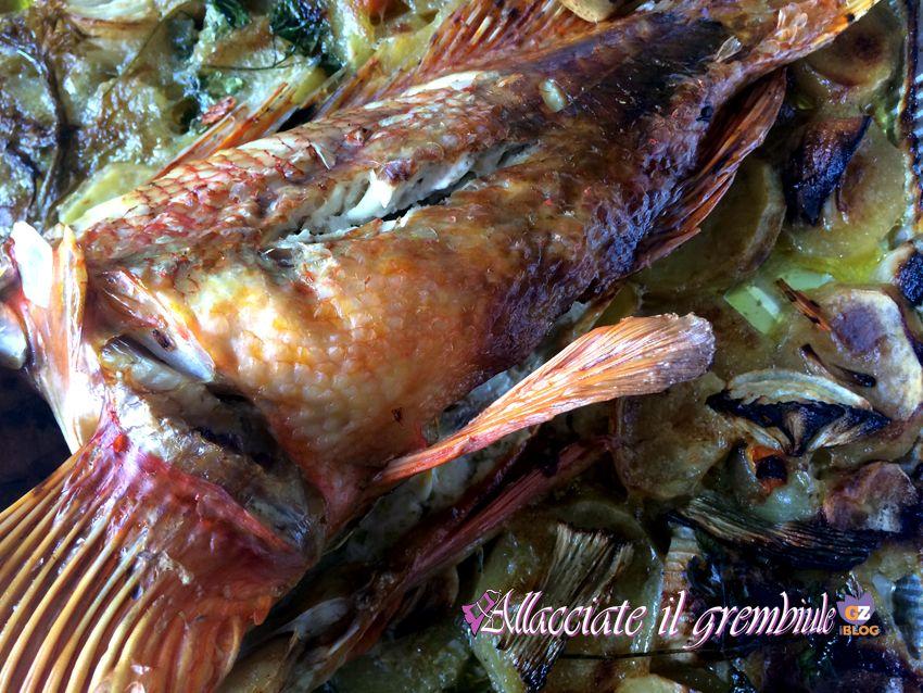 Pesce cappone ligure genovesi food meat e cucina for Cappone ricette cucina italiana