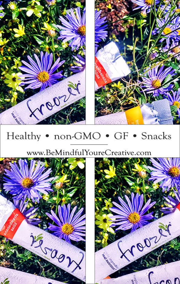 Healthy and nongmo frozen fruit snack to go! By Froozer via @mindfulsami