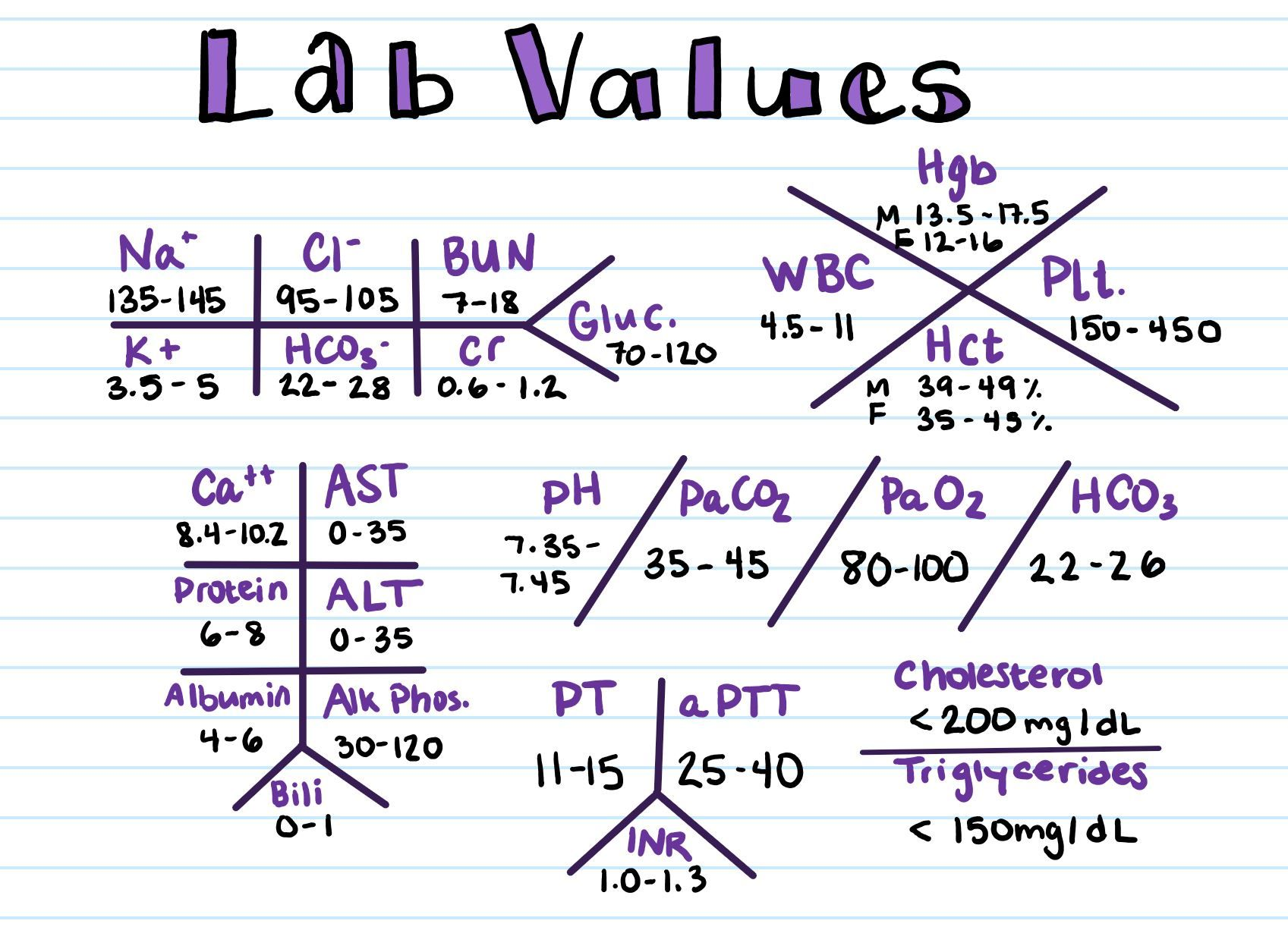 Lab Value Skeletons Arranged Traditionally With Lab Value