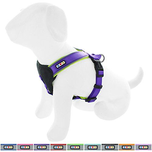 Dog Harness XS Extra Small Step In Adjustable Pink Purple Flowers Top Paw Puppy