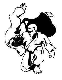 pin by lillian zhibai on jujitsu hong s favorite pinterest rh pinterest com au free jiu jitsu clipart
