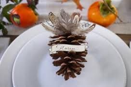 Elegant feather pinecone.