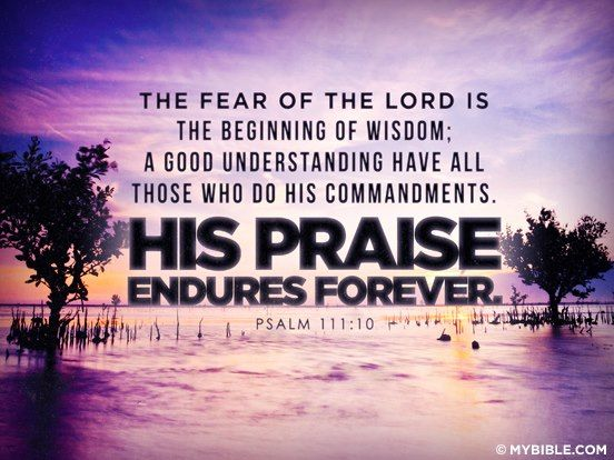 Daily Praise for 12-18-15 -- The fear of the LORD is the beginning of wisdom; a good understanding have all those who do His commandments; His praise endures forever ... Psalm 111:10