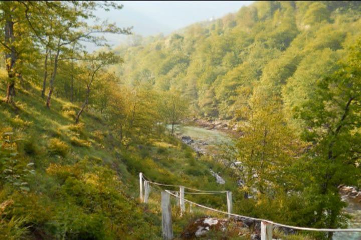 River Piva