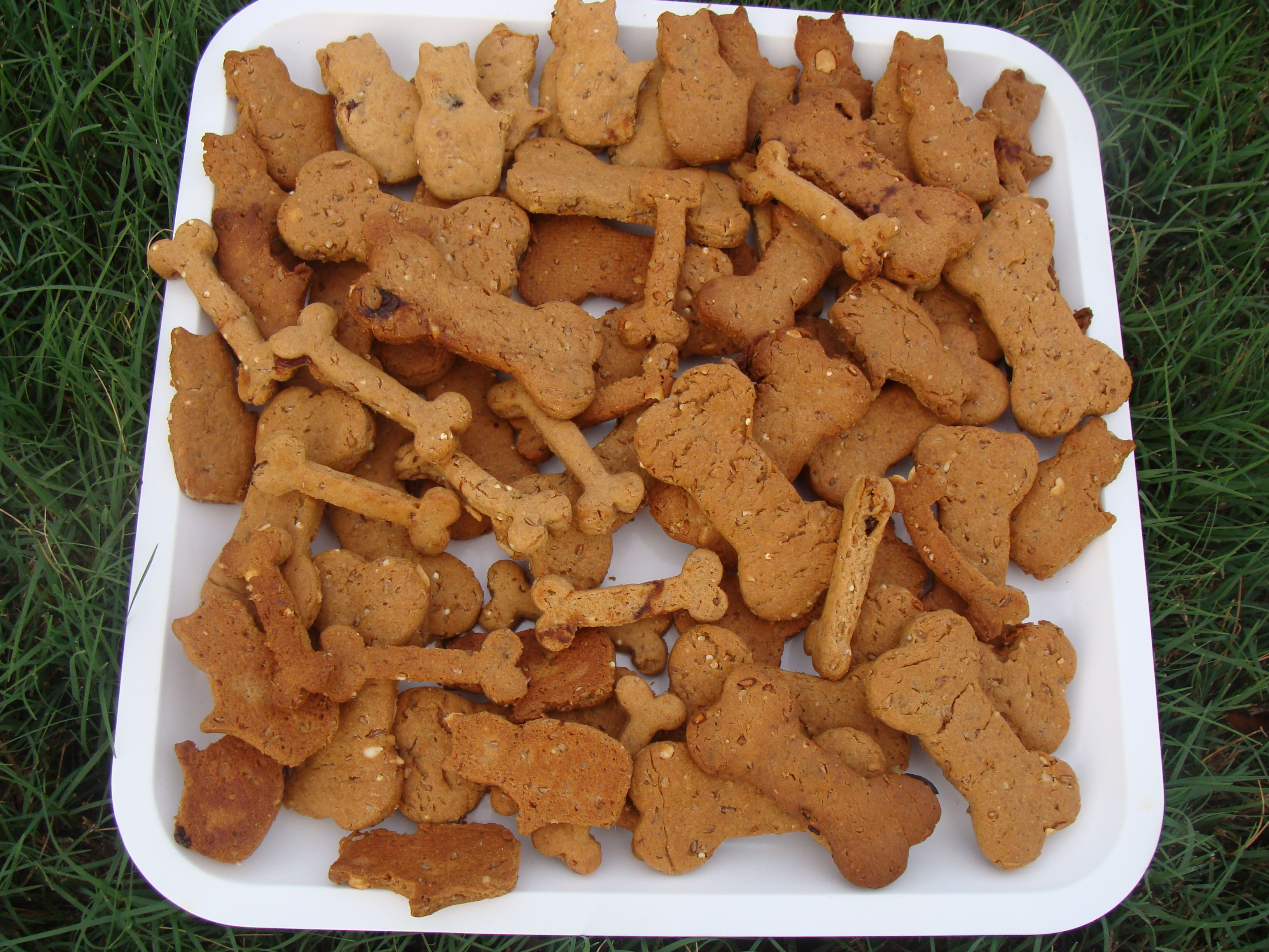 Peanut Butter and Bacon Doggy Treats - made from wild-harvested yeast.