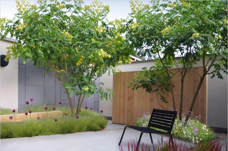 modern garden  plant  Pinterest  조경 및 정원
