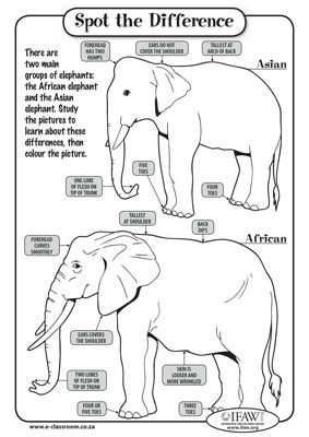 Spot the Difference printable on African and Asian