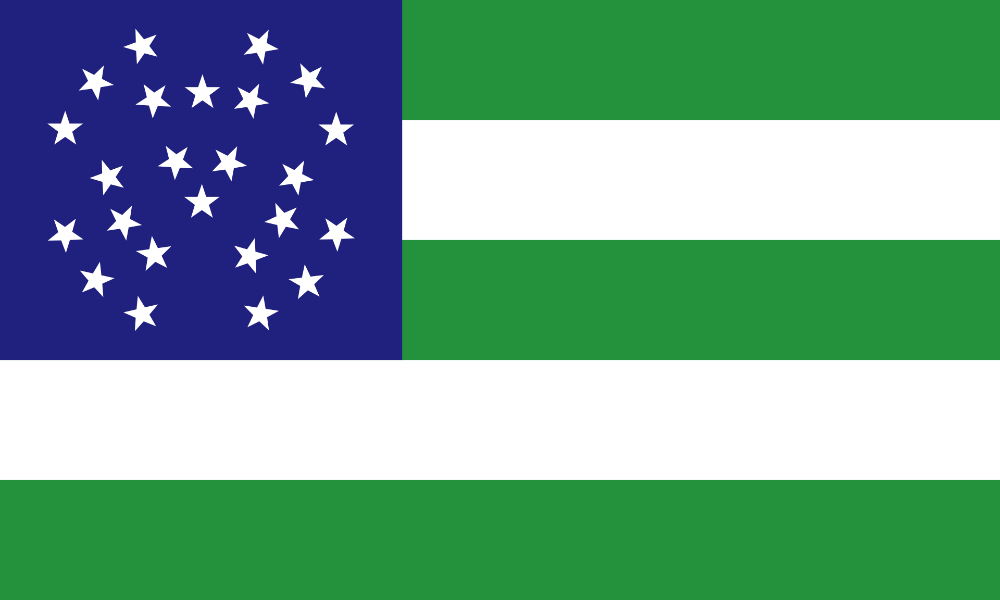 Flag Of The New York City Police Department New York City Police Department Wikipedia In 2020 Police Department Emergency Service Police