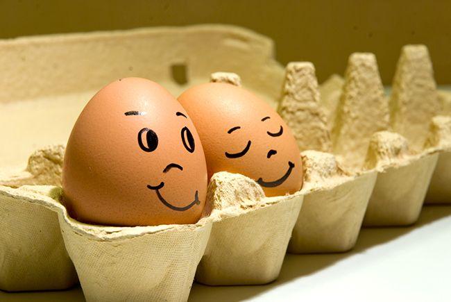 Польза яиц (7 замечательных свойств) Яйца – достаточно доступный продукт. Существует масса способов их приготовления и, кроме того, они являются ингредиентом огромного количества блюд. Казалось бы, ...