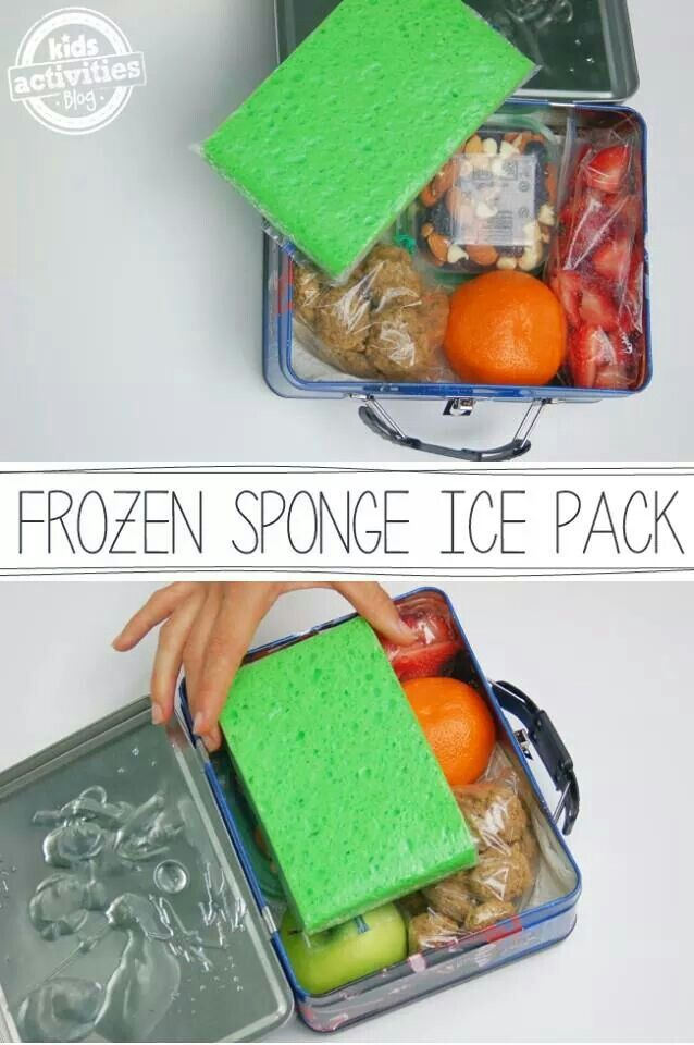 431a87e34240 Frozen sponge ice pack | simple ideas... | Kids lunch for school ...