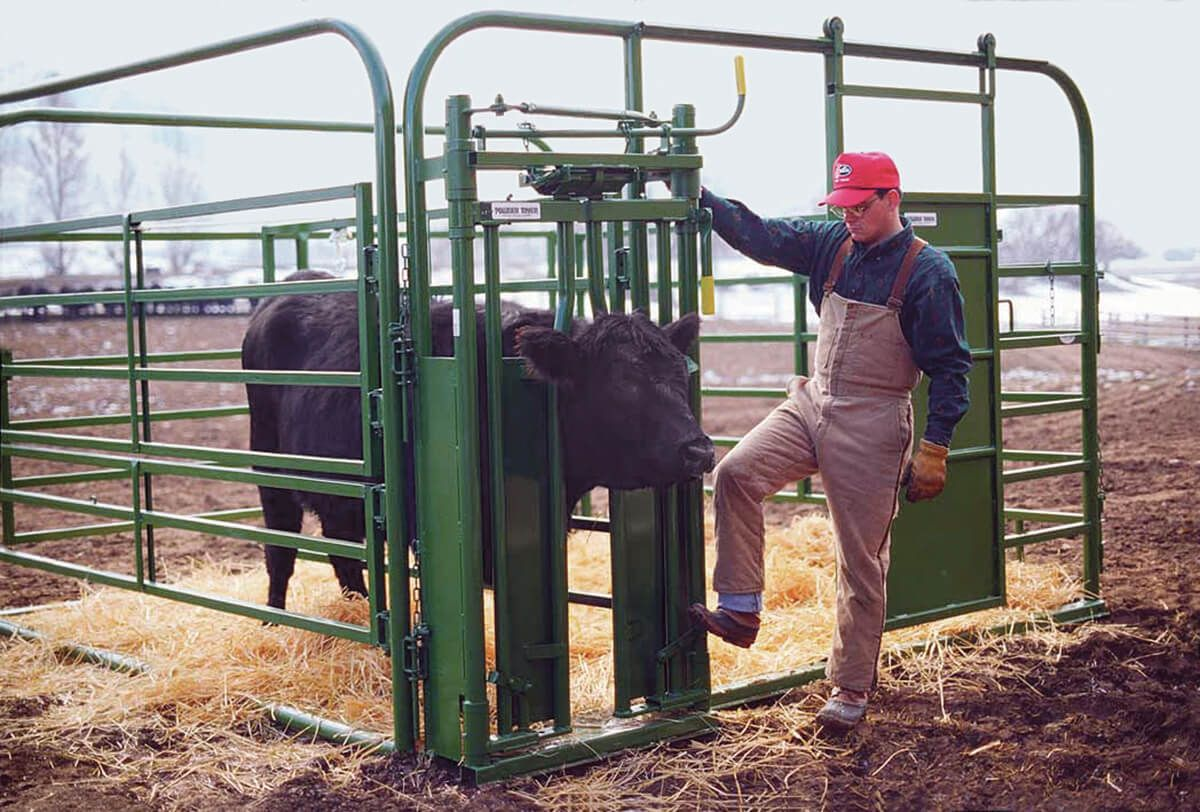 Calvinghealth pen with head gate calving barns pet