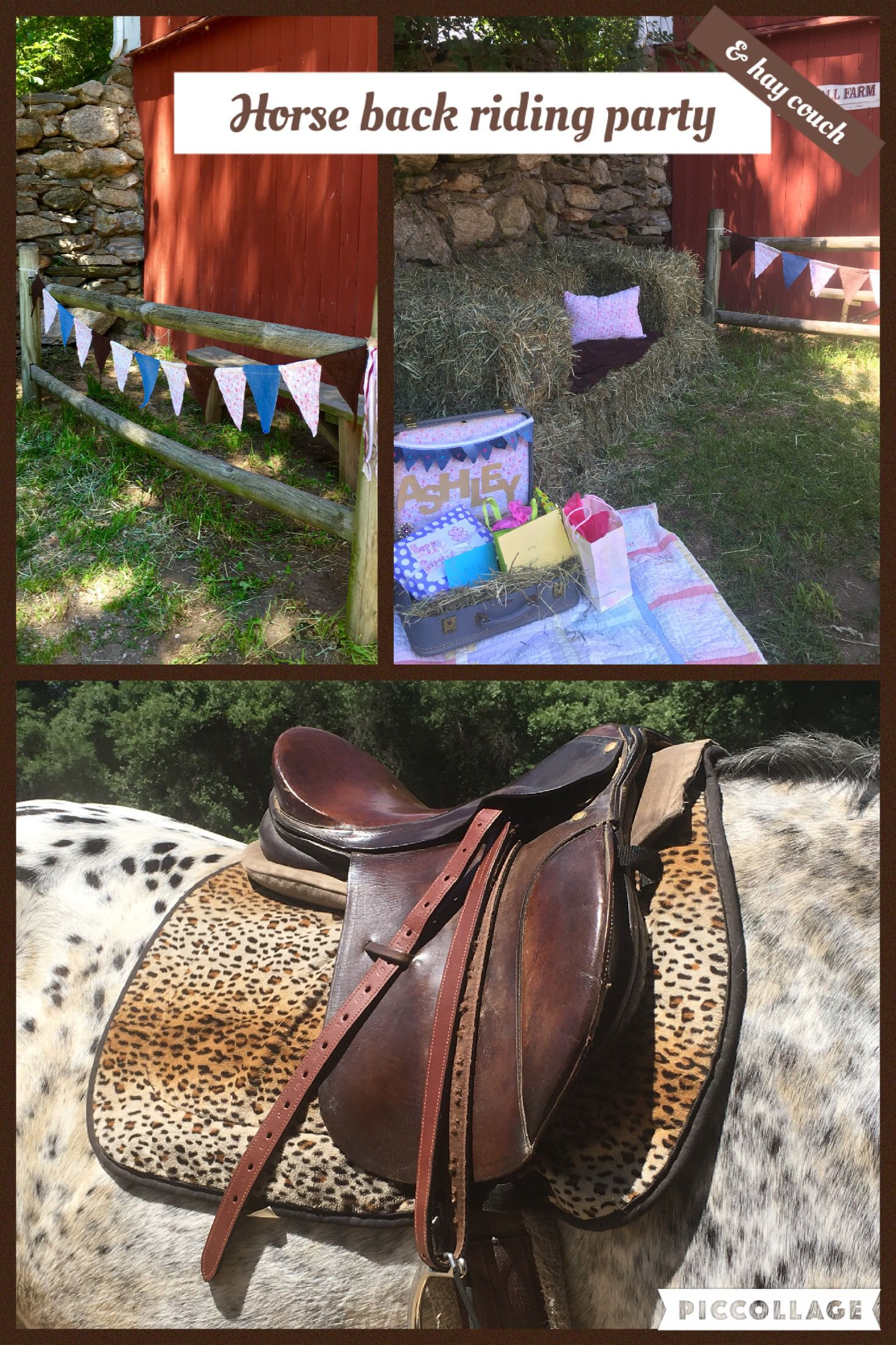 Horse party. Hay couch. Suitcase gift holder