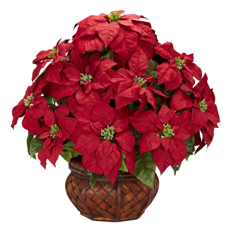 Artificial Plant Poinsettia With Decorative Planter 22 X 20 X 22 Inch Red Green Silk 1 Pieces In 2020 Plants Artificial Plants Nature