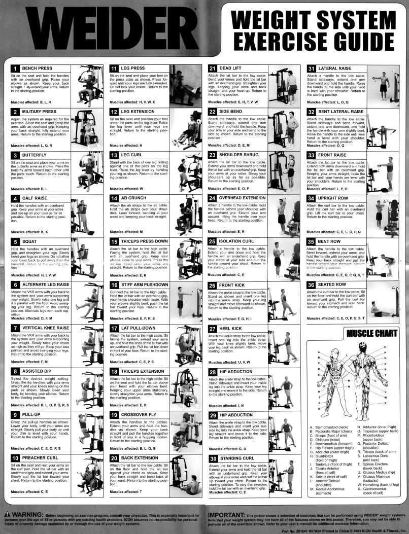 Gold's Gym Xrs 50 Exercise Chart Pdf : gold's, exercise, chart, Exercise, Chart, Buton