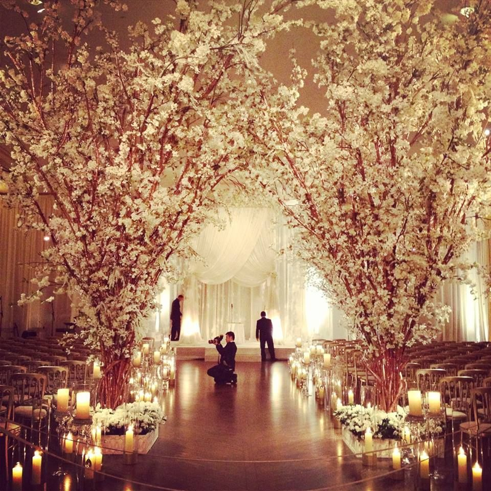 Dazzling Wedding Inspiration | Blossom trees, Orchards and ...