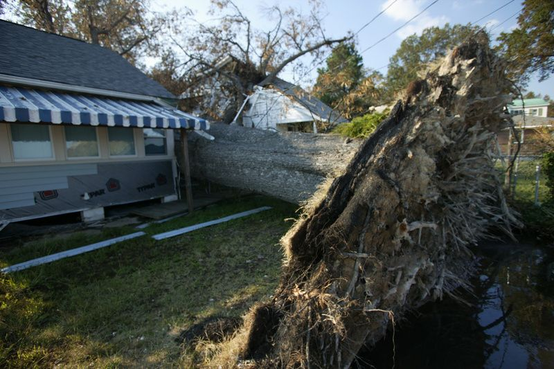 Do You Need To Update Your Homeowner S Insurance Hurricane Isabel
