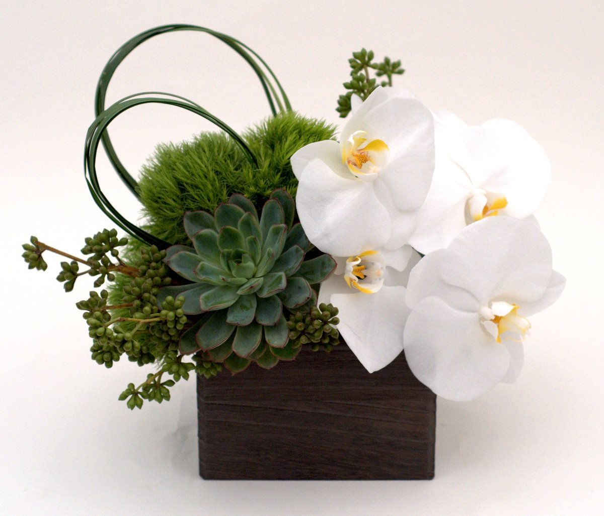 Modernes zen-küchendesign modern flowers online delivered in nyc local florist with delivery