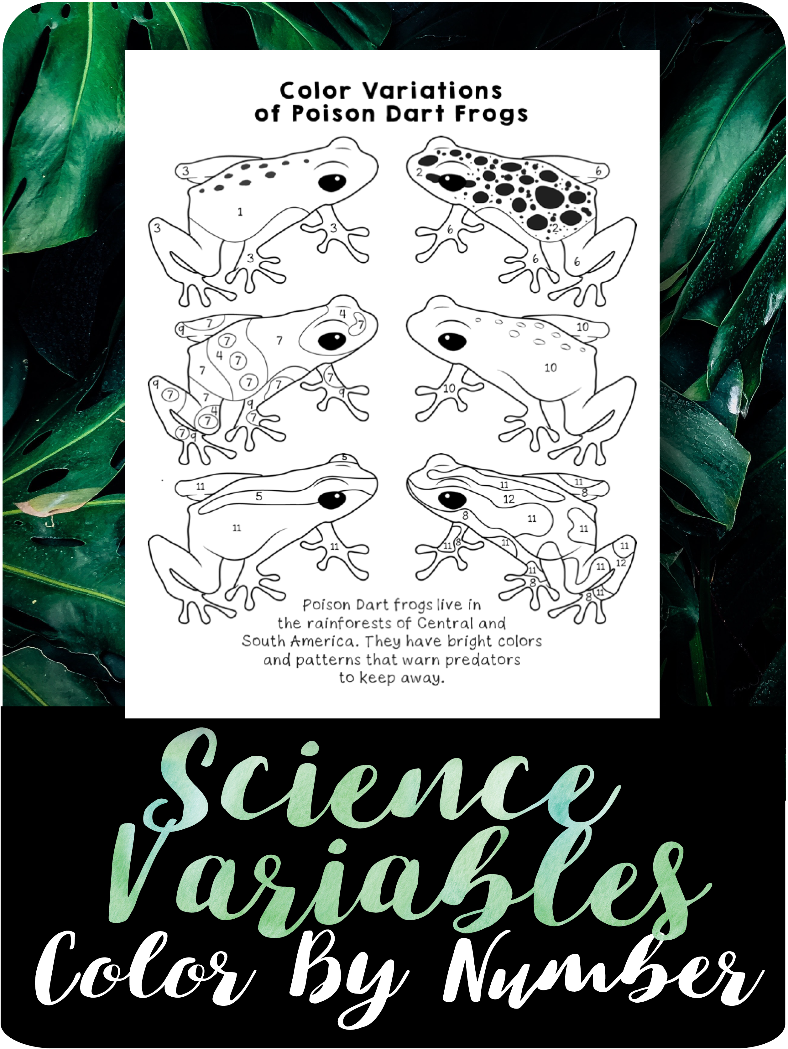 Science Variables Color By Number Review Worksheet Science Frog Coloring Pages Variables [ 3348 x 2515 Pixel ]