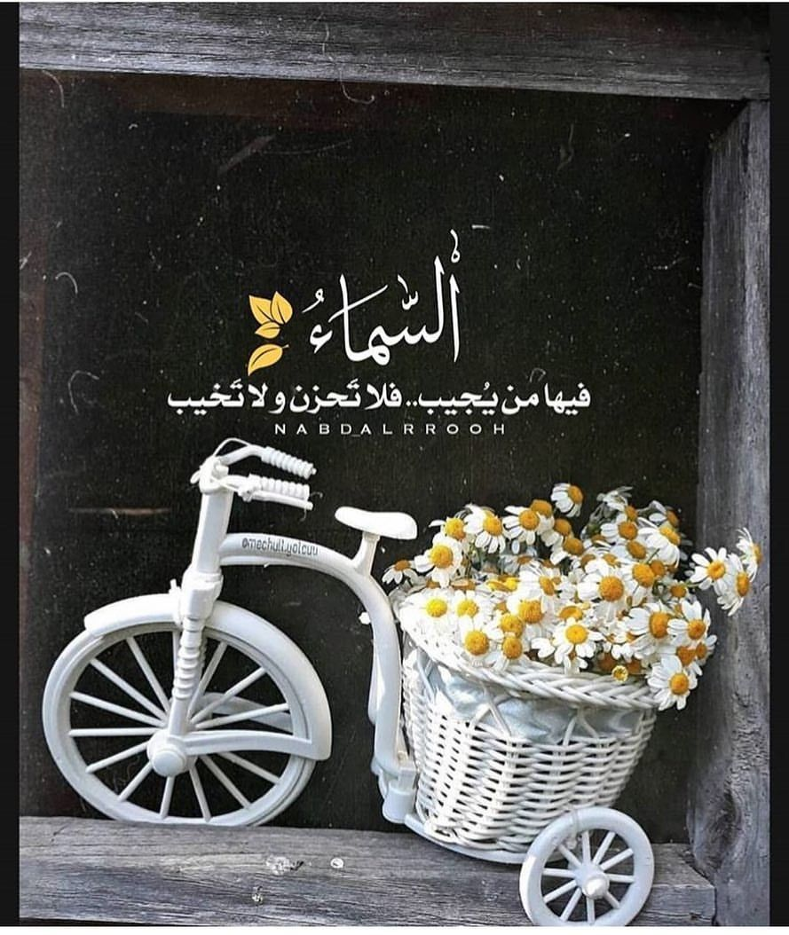 Pin By Ghada Abdulqader On كلام أعجبني