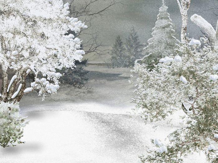 Картинки анимации снежные