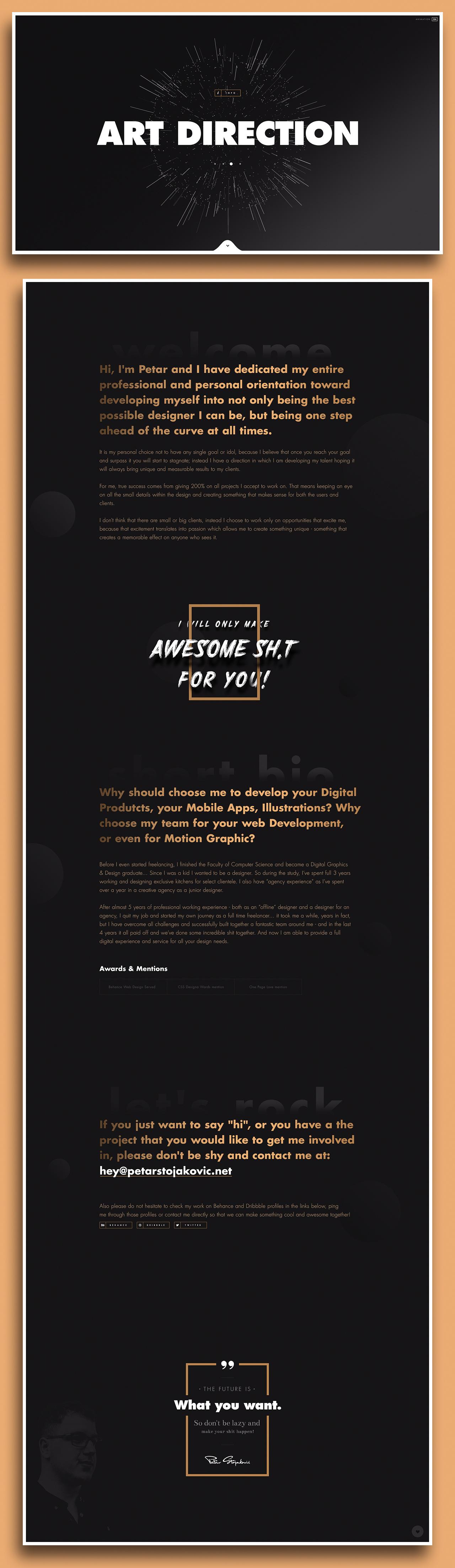 Petar Stojakovic Web Design Design One Page Website