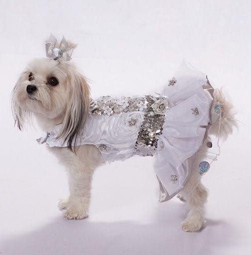 Dog Wedding Dress - www.theclassydog.com | Luxury Wedding Dress ...
