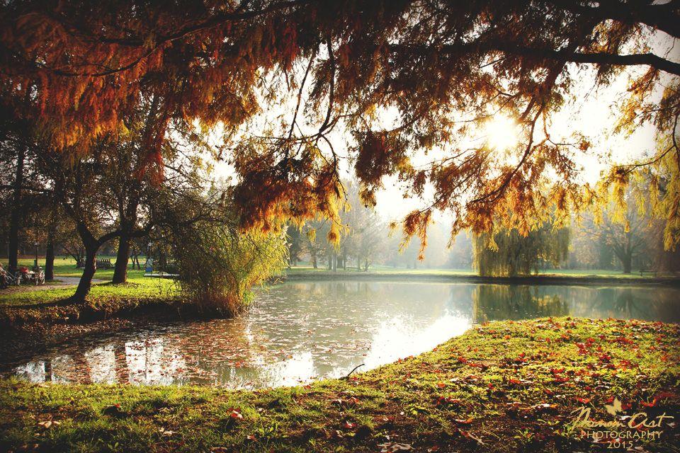 Autumn in Hungary (Szigetvár)
