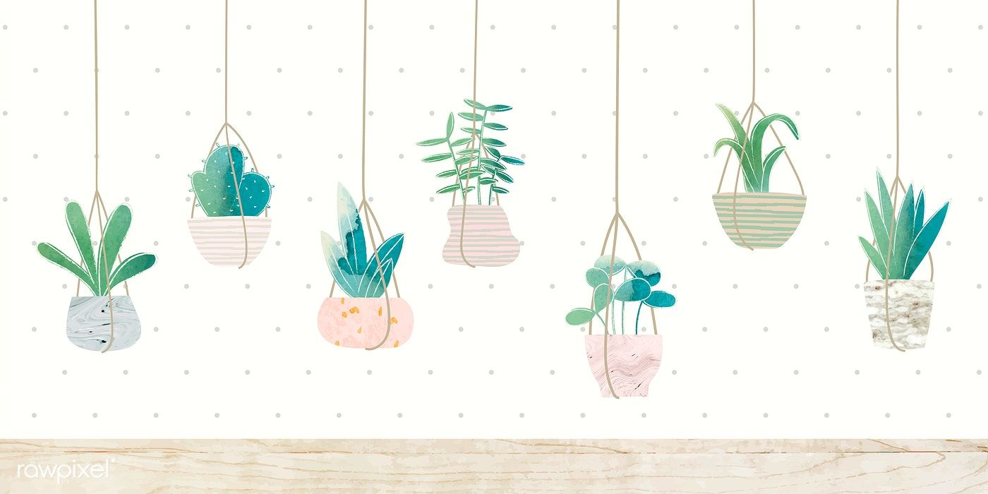 Download Premium Vector Of Botany Hanging Cactus Collection Vector 1017036 Sunflower Iphone Wallpaper Simple Iphone Wallpaper Pink Wallpaper Desktop