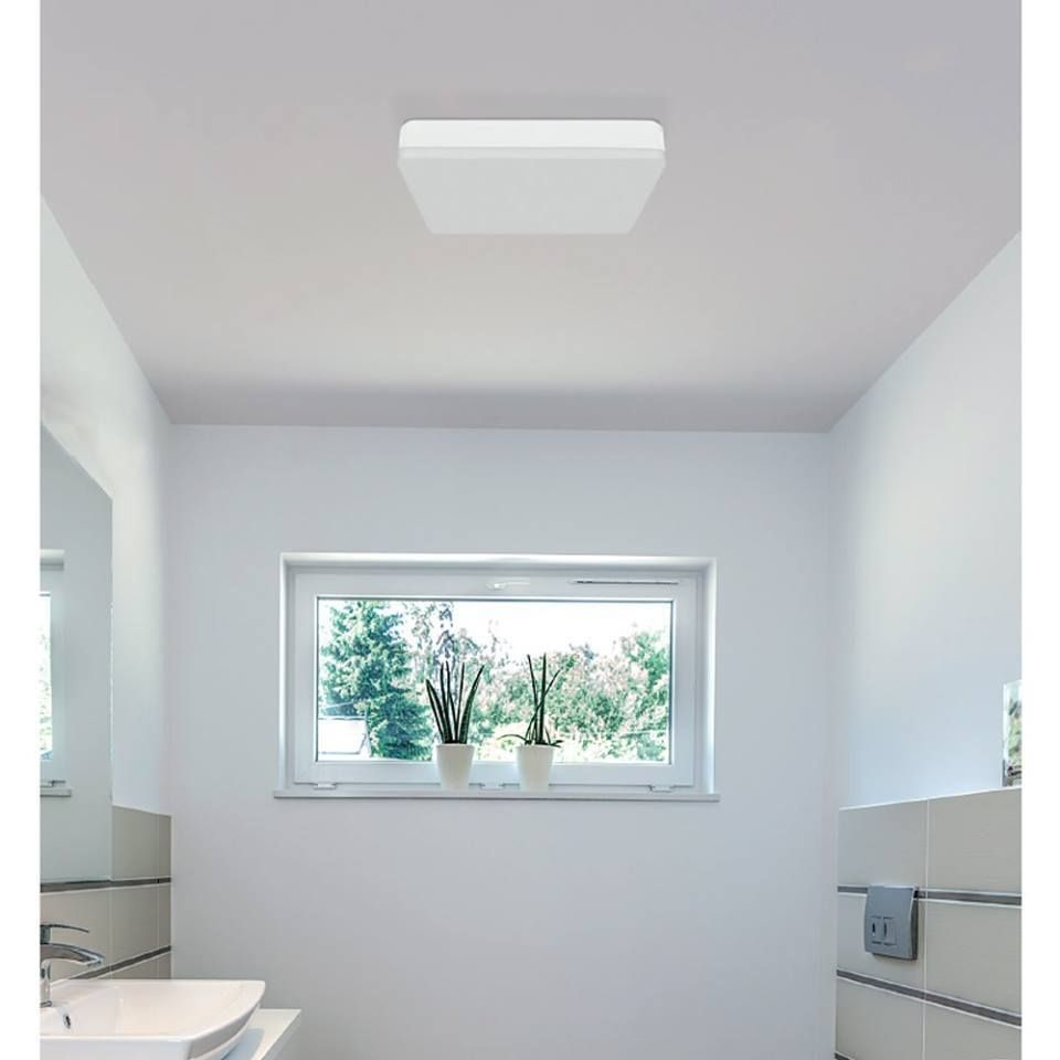 Led Ceiling Light Ip54 24w Wonderlamp Shop Led Ceiling Lights Ceiling Lights Flush Lighting