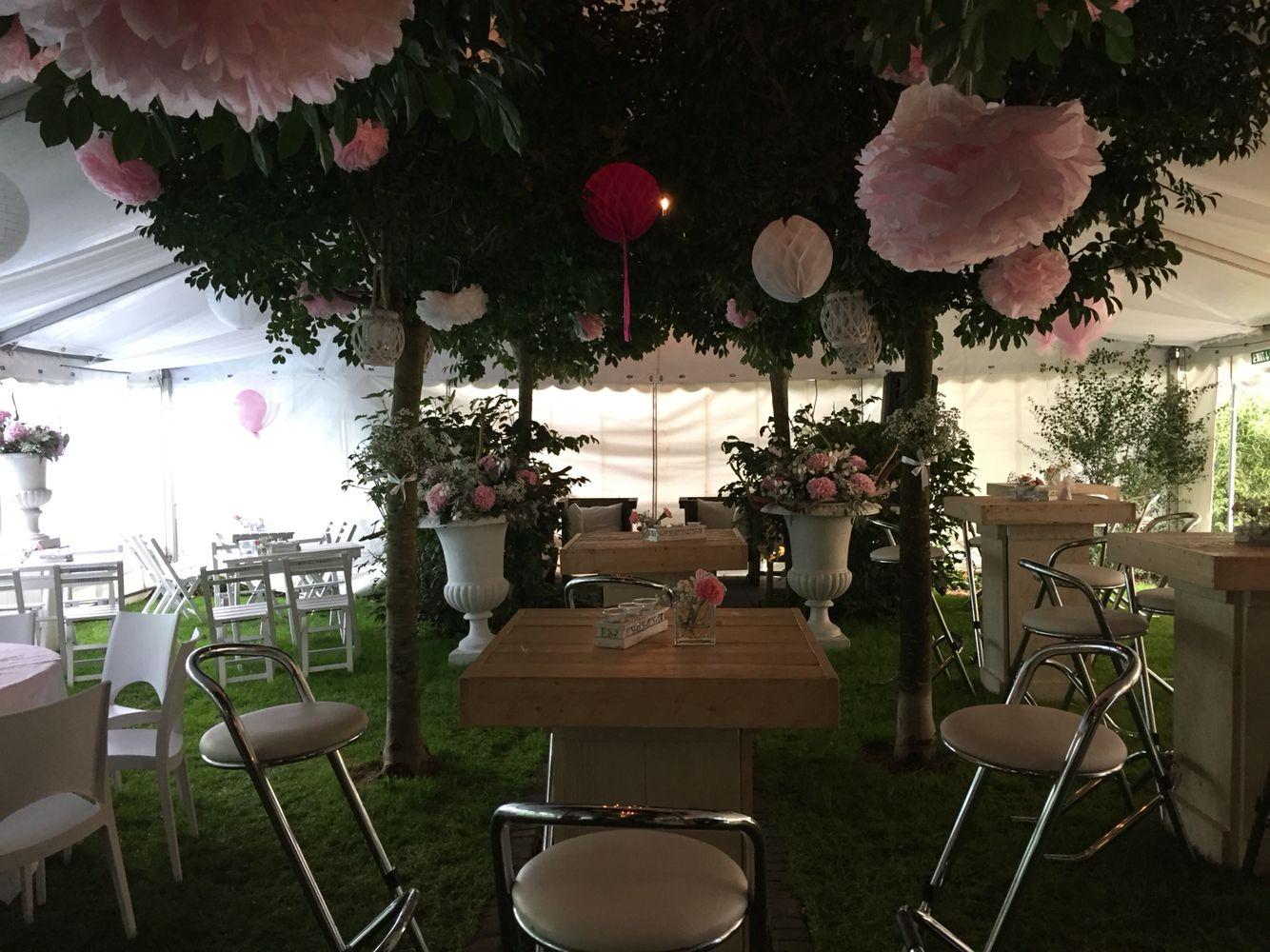 Feest- of Bruilofts-locatie. Regen? Zet gewoon een tent over je tuin!  Van Rijswijk Verhuur kan het!