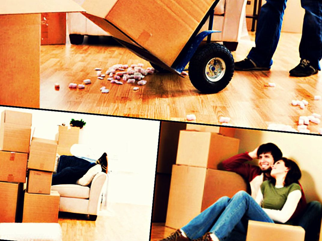 Choose amazing garbage removals in Sydney. We are