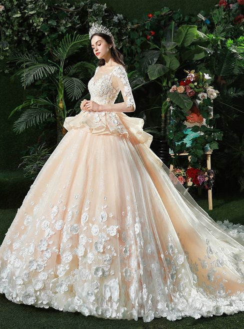 c7686e34dab01 Champagne Ball Gown Tulle Appliques Long Sleeve Backless Wedding Dress
