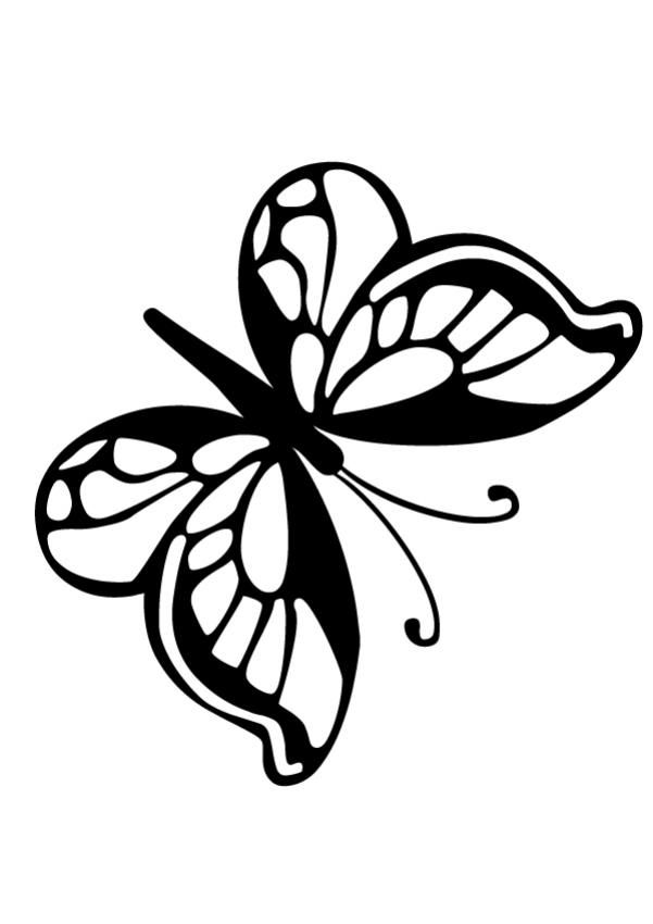Small Butterfly Coloring Page Template Kelebek
