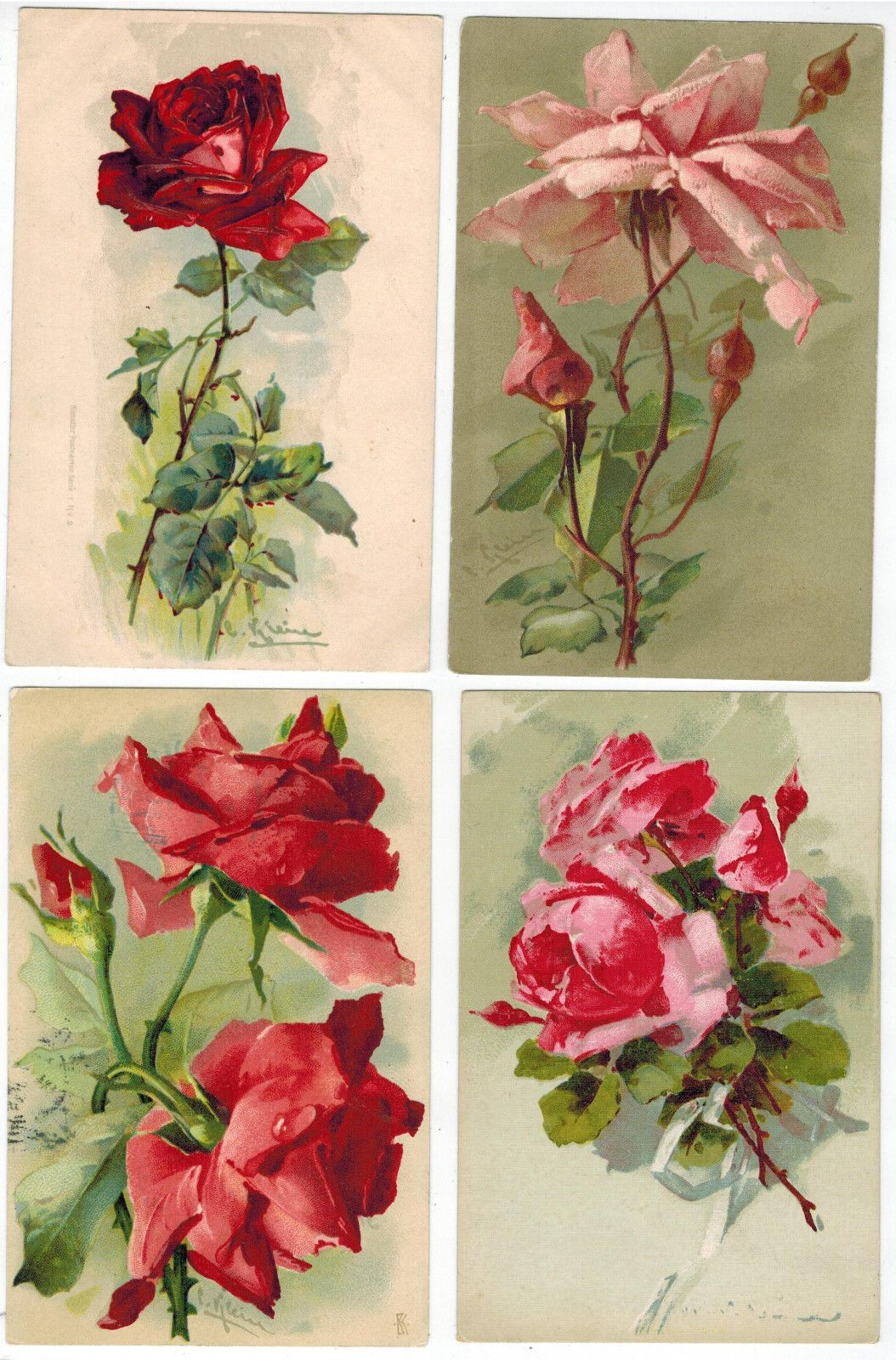 art cards of catherine klein roses issued in europe from