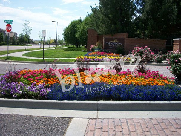 Commercial Landscape Annuals Design And Installation By Bloom