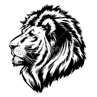 Http I Istockimg Com File Thumbview Approve 7874884 2 Stock Illustration 7874884 Lion Head Logo Jpg Lion Art Animal Drawings Lion Face
