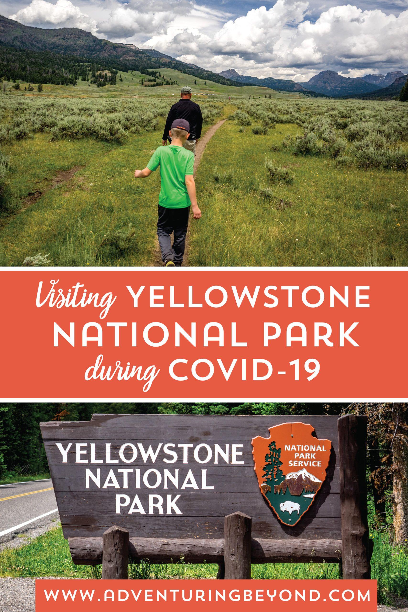 Pin On Yellowstone Trip