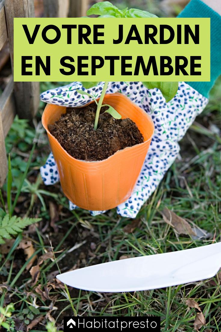 Plante A Planter En Septembre jardiner en septembre 2019 : que faire au jardin et au
