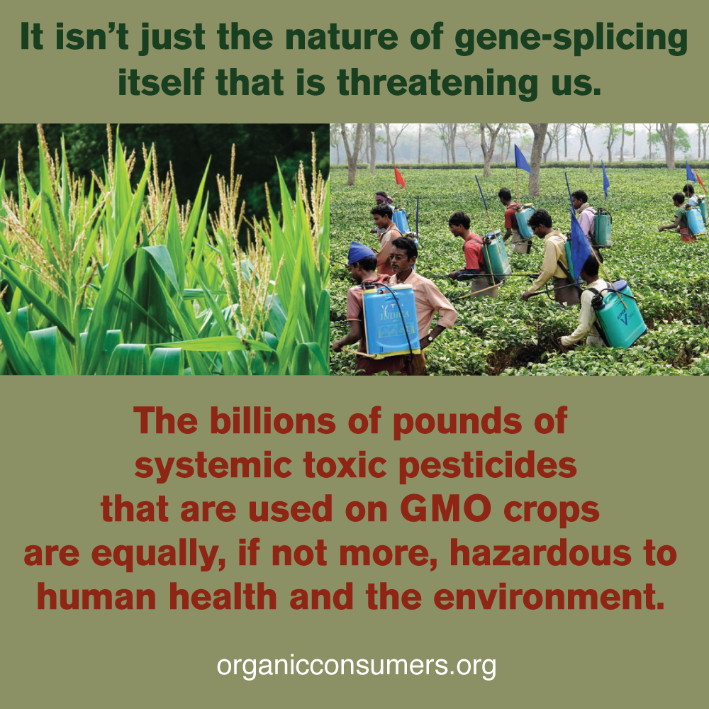 Pin By Mary Hensley On Current Events Organic World Environment