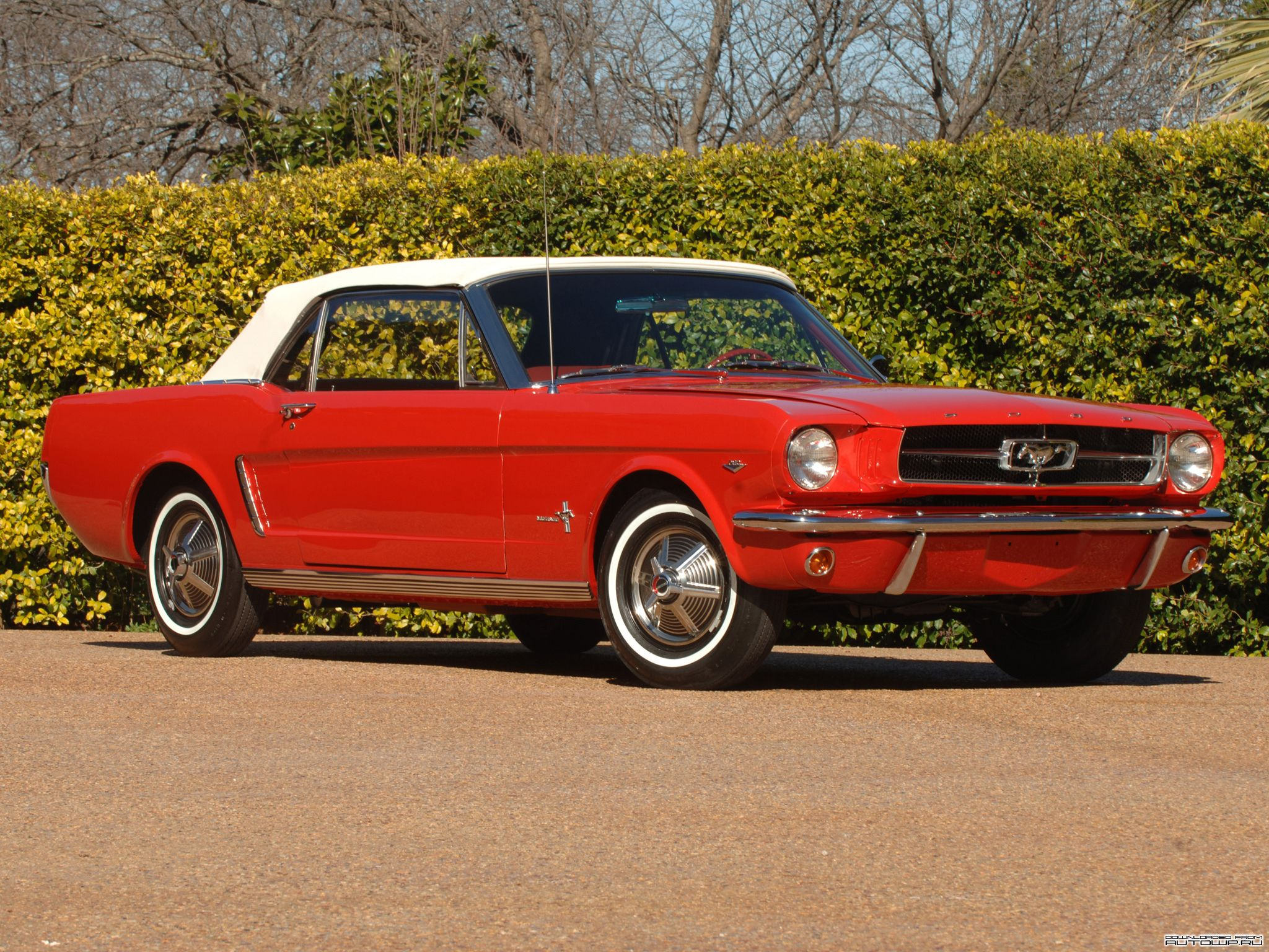 1964 1 2 Mustang Convertible Candy Le Red With White Wall Tires Isn T She A Beauty Jw